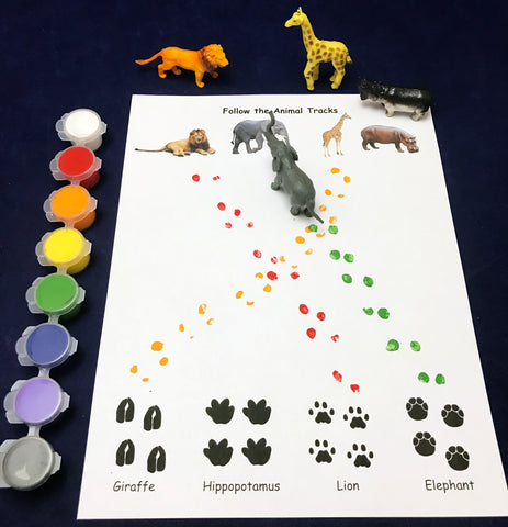 Animal Tracks project science activity kids