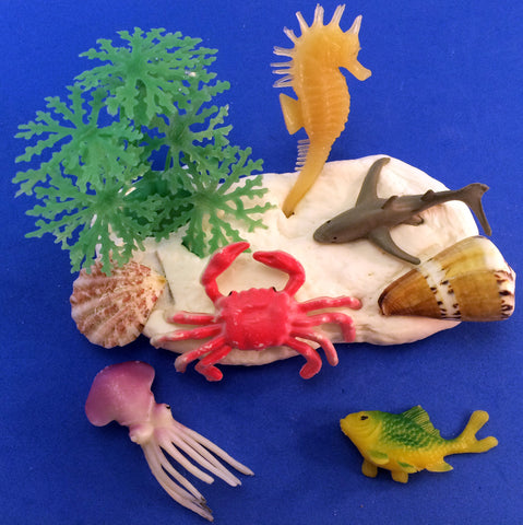 Science activity inspired by the book Over in an Ocean in a Coral Reef. Use clay, sea creatures and seashells to create your own coral reef.