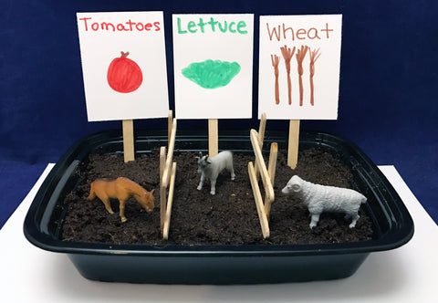 Plant your own crops science activity Farm theme kids
