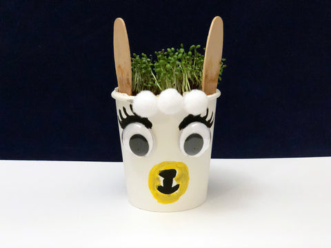 Llama planter science project kids