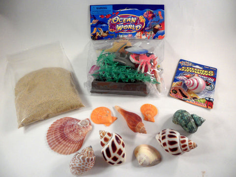 Design a hermit crab habitat - A House for Hermit Crab - Ivy Kids subscription box activities.