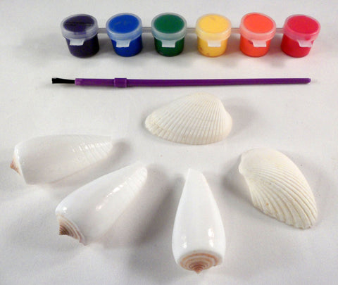 Painting shells A House for Hermit Crab - Ivy Kids subscription box activities.
