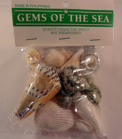 Bag of shells - A House for Hermit Crab - Ivy Kids subscription box activities.
