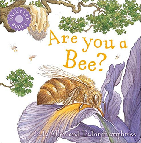 Are you a bee? children's book Judy Allen