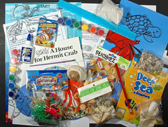 Math, science, literacy, and art activities for A House for Hermit Crab