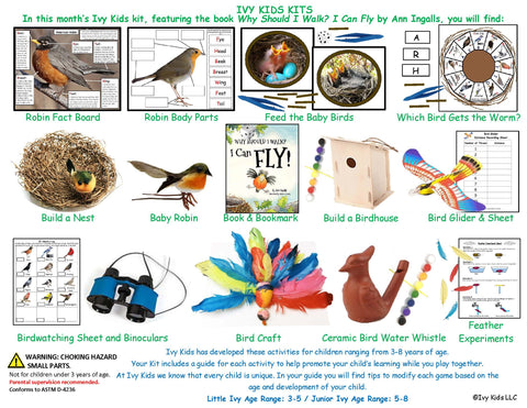 Spring activities for Kids baby birds and flying