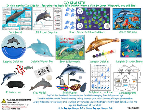 Dolphin themed activities STEM kids