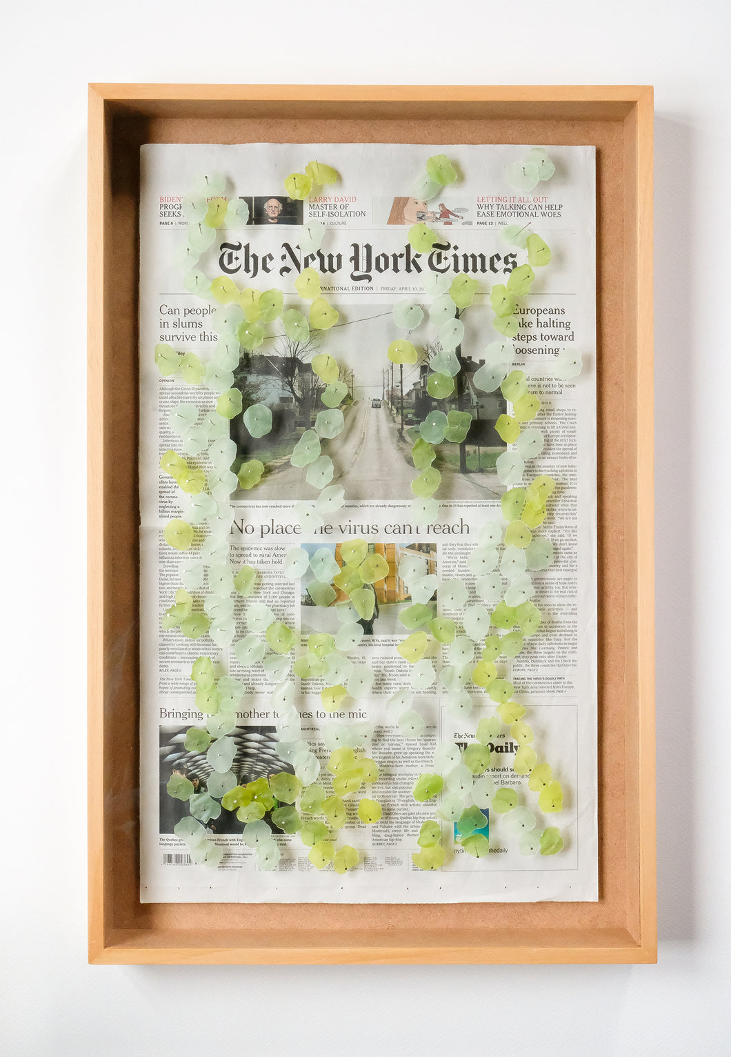 Forest on The New York Times
