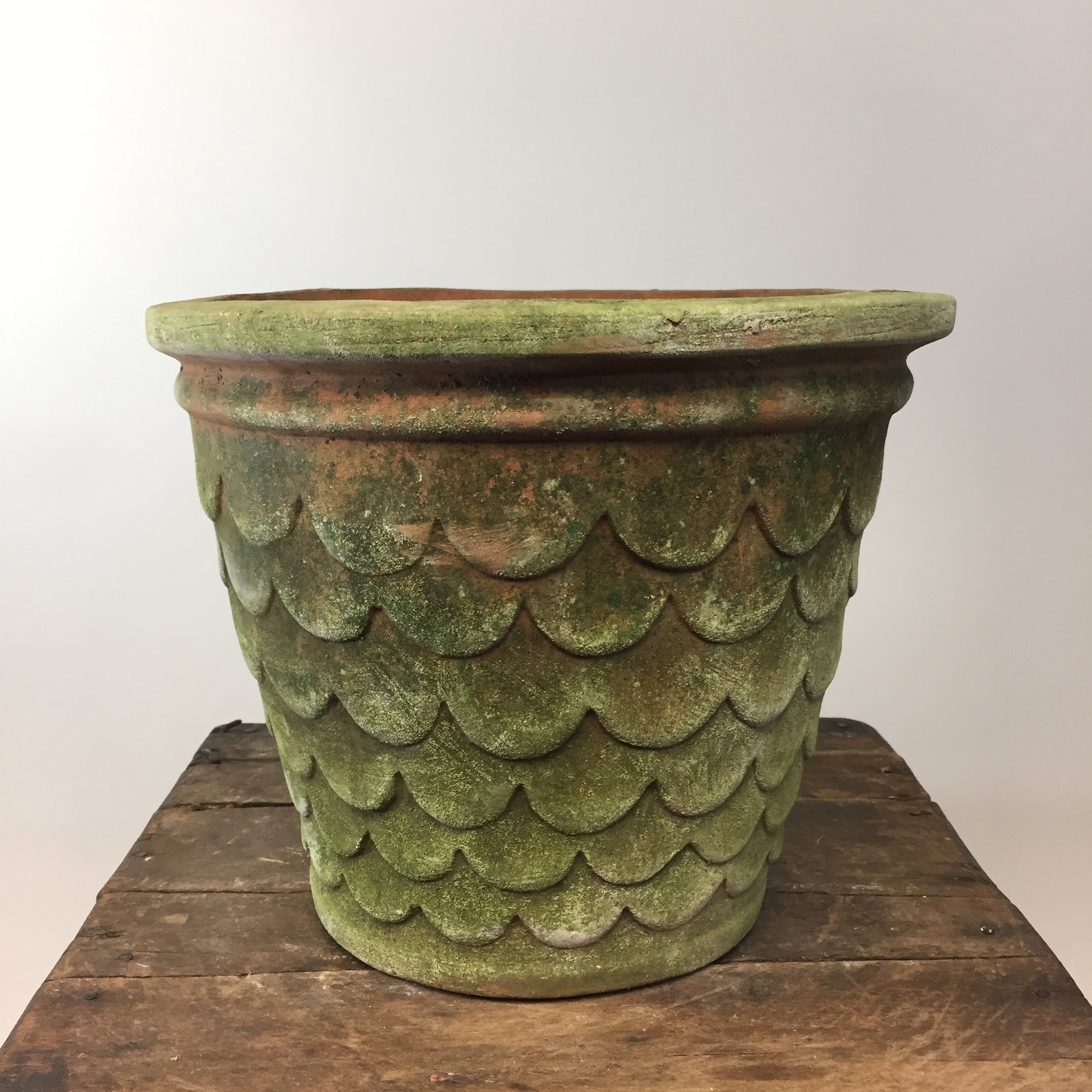 Dragonscale Aged Terracotta Pot. Large.
