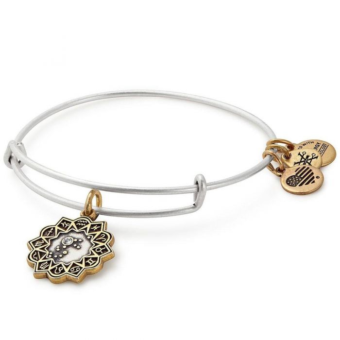 Aquarius Two Tone Charm Bangle Bracelet