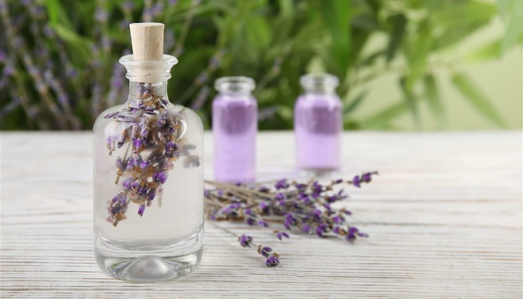 The Power of Aromatherapy: 5 Essential Oils That You Should Use