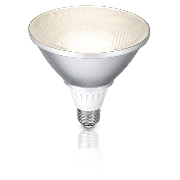 13w Cool White LED PAR38