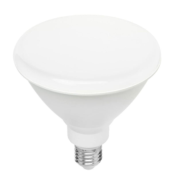 10w Cool White LED PAR38