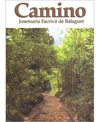 Camino - Small - USA Madrid