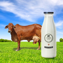 Load image into Gallery viewer, Pure A2's Sahiwal Cow's milk