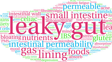 How Does L-Glutamine Help With Leaky Gut?