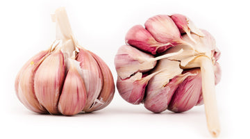 Health Benefits of Garlic that You Should Know