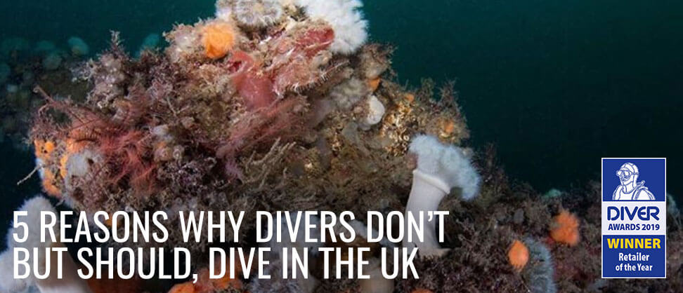 5 Reasons Divers Don't, But Should, Dive In The UK