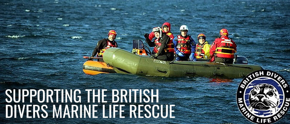 Mike's Dive Store Supports British Divers Marine Life Rescue