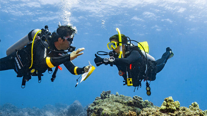 PADI Dive Theory E-Learning Course