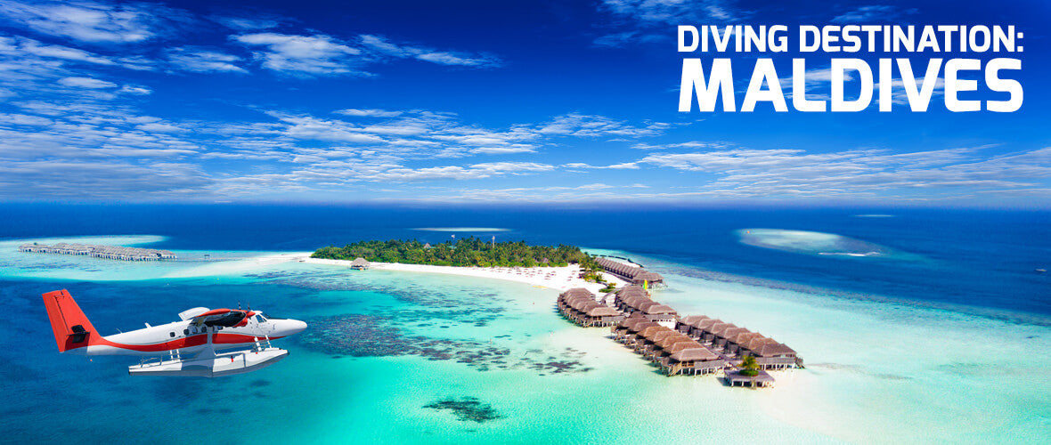 Diving Destination Maldives