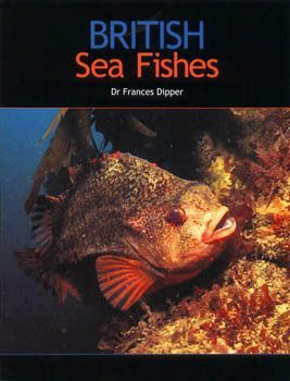 British Sea Fishes - Mike's Dive Store