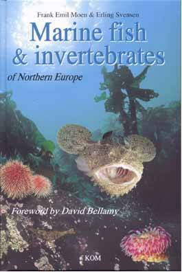 Marine Fish & Invertebrates of Northern Europe - Mike's Dive Store