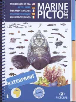 Marine Pictolife Mediterranean Sea -Identification Guide - Mike's Dive Store