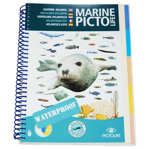 Marine Pictolife Eastern Atlantic and British Isles - Mike's Dive Store