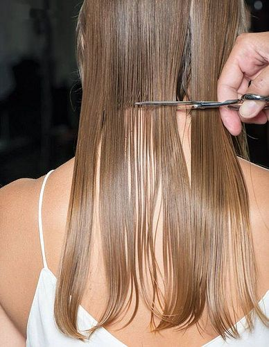 Does Frequently Cutting Your Hair Really Make It Grow Quicker?