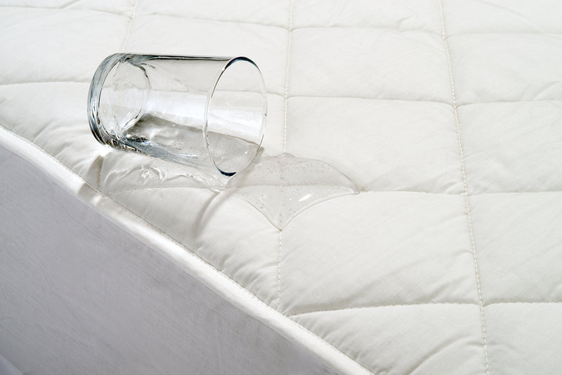 AmazonBasics Waterproof Quilted Mattress Protector (Single)