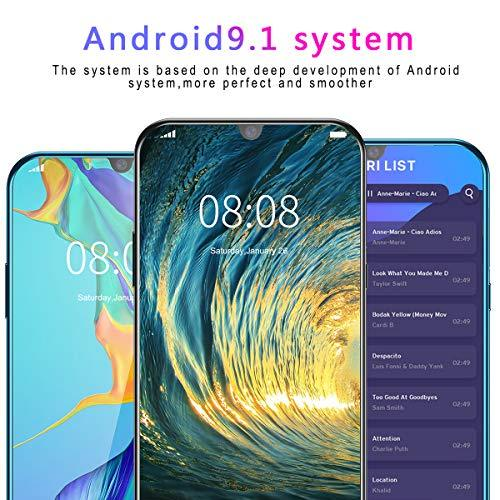 Unlocked Smartphone,6.3inch HD Display 8GB RAM 256 GB ROM