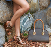Brown & Cognac Handbag