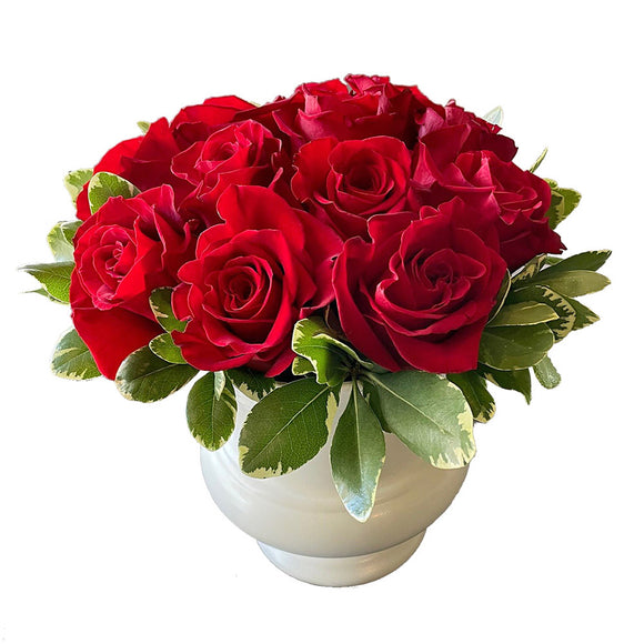 Rose Romance (Red Roses)