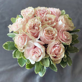 Rose Romance (Assorted Colours)