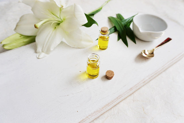 Ingredient Spotlight: Tamanu Oil