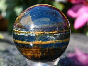 Polished Blue and Gold Tigers Eye Egg. Photo take from the back