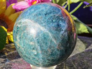 Polished Blue Apitite Ball