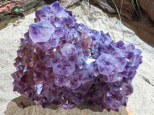Load image into Gallery viewer, XL Natural Dark Purple Natural Amethyst Spirit Quartz Cluster from Kwandebele.