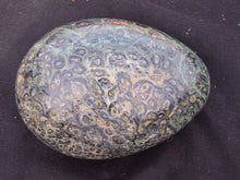 Load image into Gallery viewer, Black Fossil Polished Display Egg