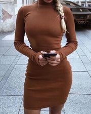 High Neck Skinny Long Sleeve Dress