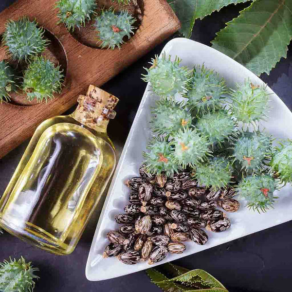 Benefits of Jojoba Oil for Beard