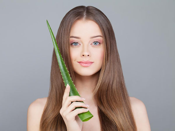 Aloe Vera for Healthy Hair