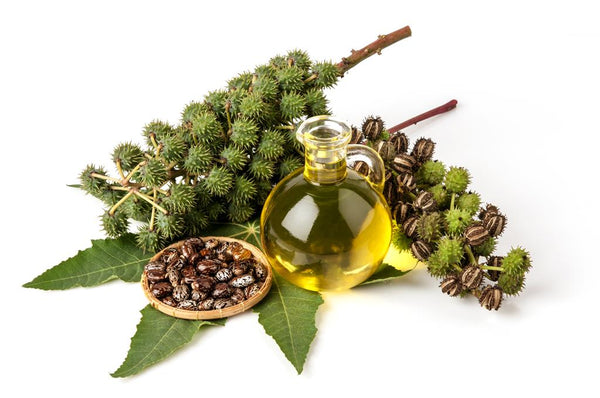 Castor Oil for Massage - Tips and How to Use