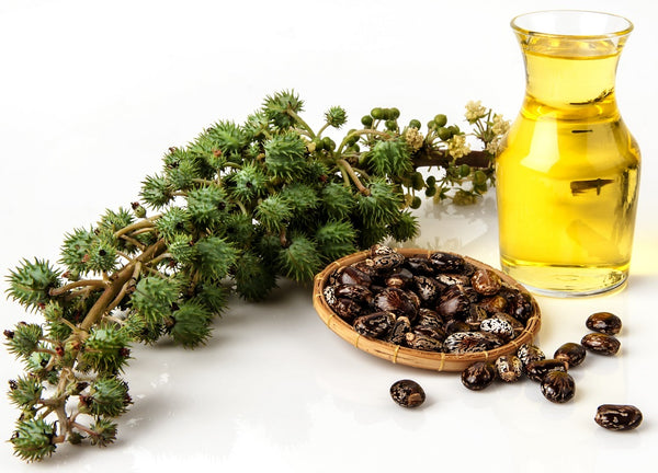 Castor Oil And Its Incredible Beauty Benefits