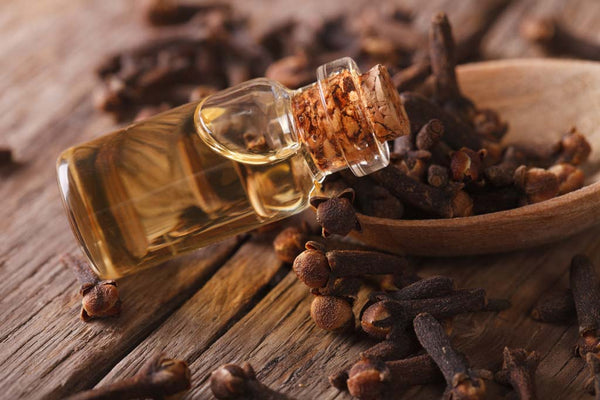 Benefits of Clove Oil