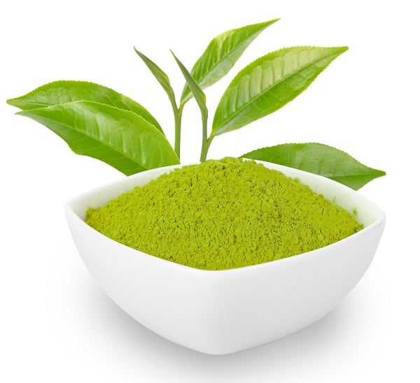 Green Tea Extract- A Magic Potion For Hair