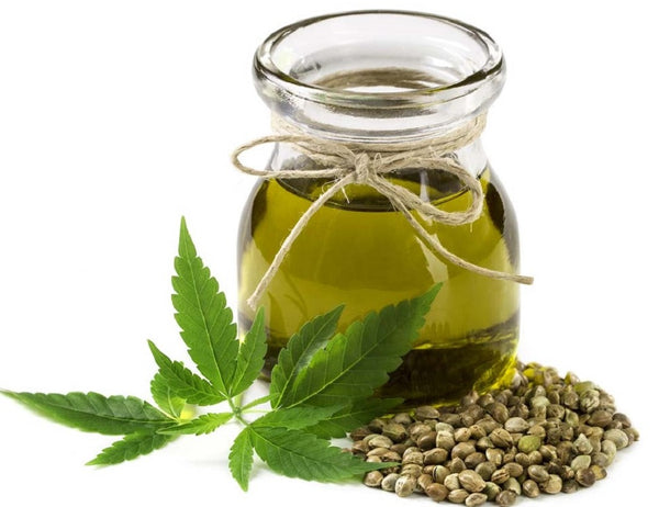 7 Benefits of Hemp Seed Oil