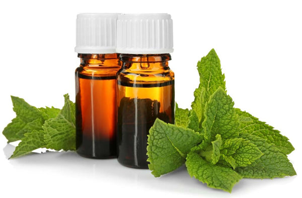 Benefits and Uses of Peppermint Oil for Health Hair Skin
