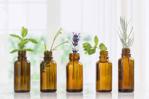 10 Best Essential Oils for Hair: Benefits & Uses
